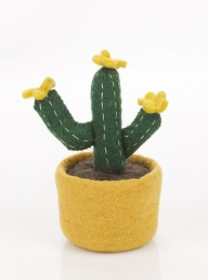 Bloom Cactus - Yellow
